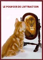im_lion.jpg